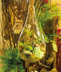 A hanging, tear-shaped glass vessel that's filled with tropicals, air plants and succulents, is the newest option for creating terrariums.