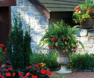 Dozens of container gardens fill the patios and pool areas. Created by John, they are composed of favorites such as lantana, geraniums, vinca, begonias, impatiens and ferns, as well as new finds like papyrus and Pencil Holly.