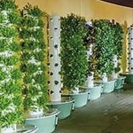 Tower Garden® aeroponic technology