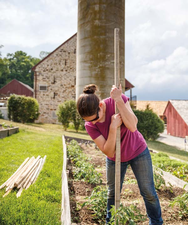 Leah, who is on the gardening staff at Wyebrook, works in the kitchen garden that supplies the restaurant and market with six varieties of tomatoes (cherry to slicing), herbs and other summertime vegetables.