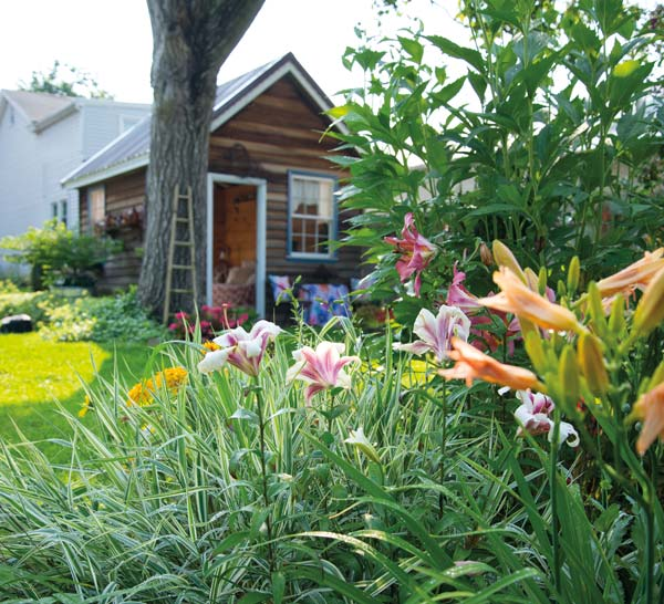 Perennials set the tone in the gardens that define the backyard.