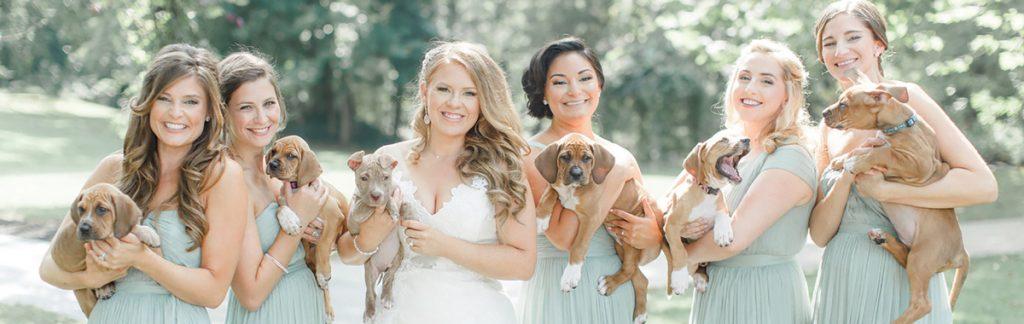 Real Weddings: Sarah Mallouk + Matt Crain