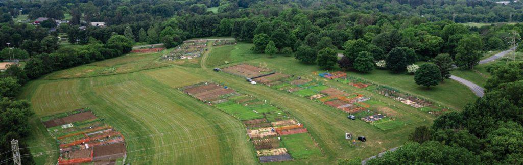 Lancaster Gets Growing: Community Gardens